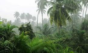 রোববার পর্যন্ত হালকা বৃষ্টি অব্যাহত থাকবে